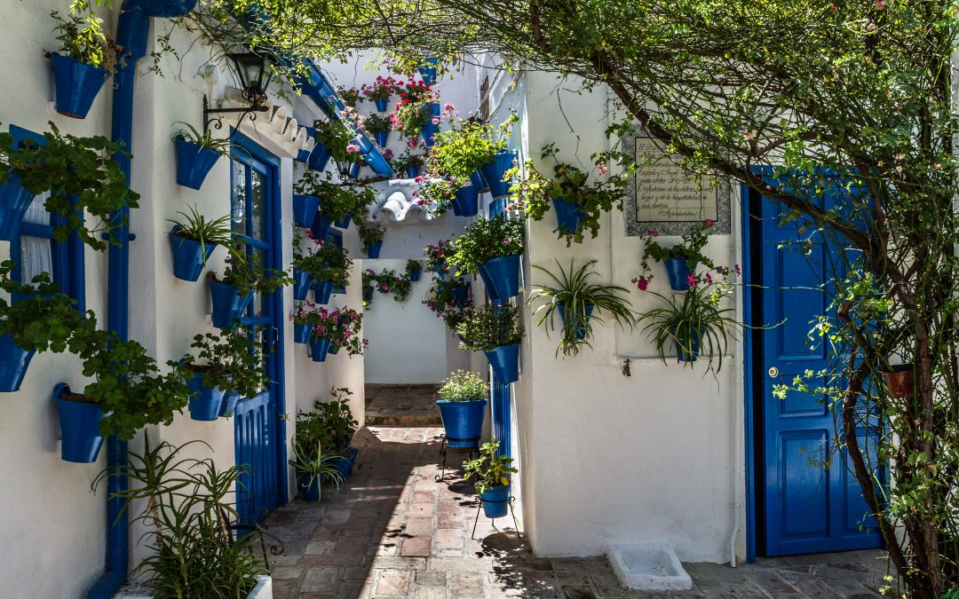 Entradas Patios de Córdoba