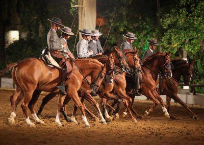 Córdoba Ecuestre (22)