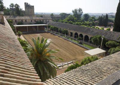 Córdoba Ecuestre (26)